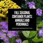 Fall Seasonal Container Plants: Annuals and Perennials for Autumn Baskets