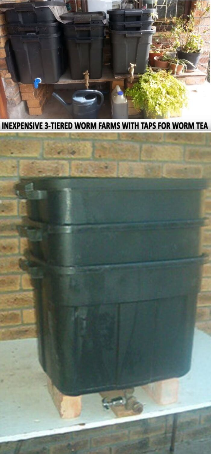 Three-tiered worm compost bin