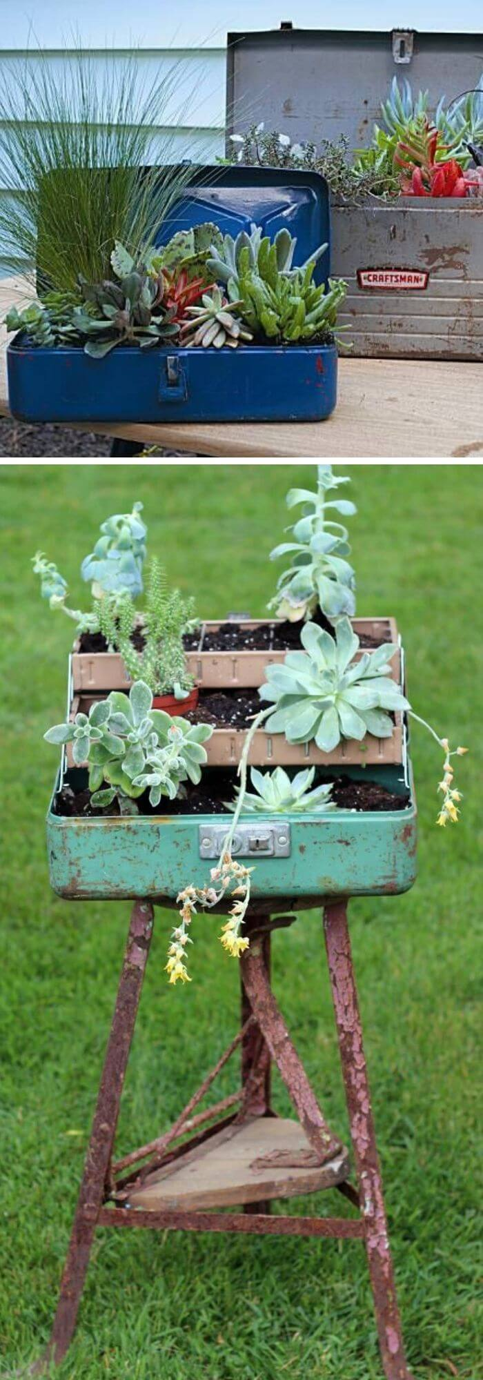 Old Fishing Tackle Box Succulent