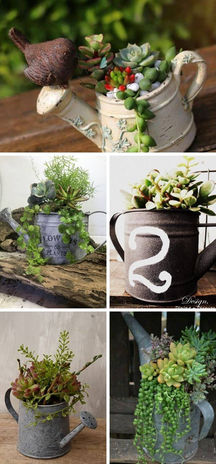Watering Can Succulent Planter