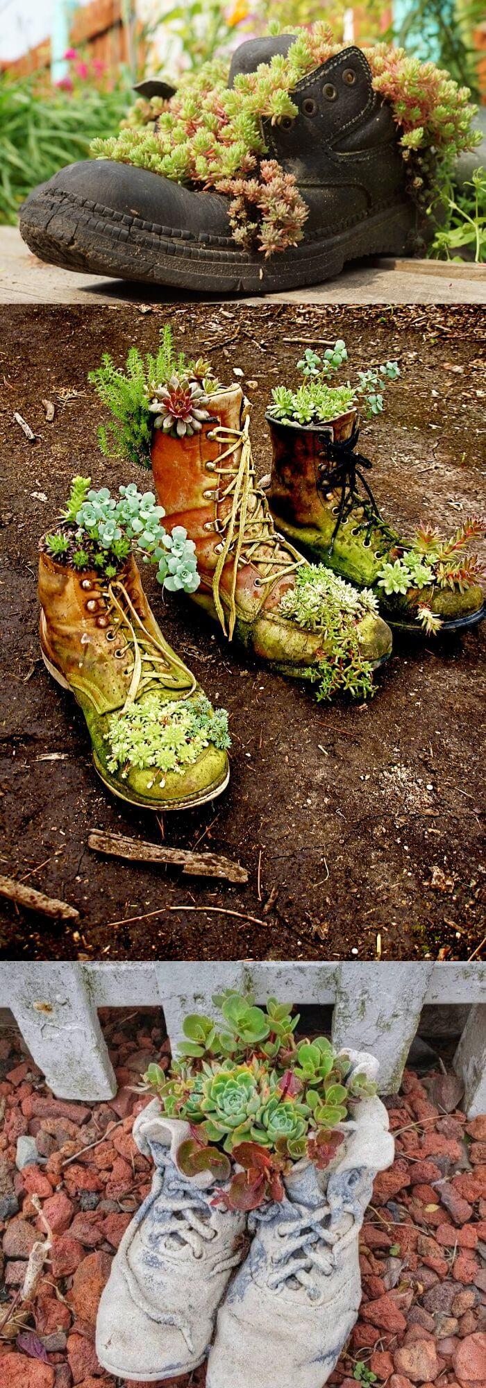 Shoe Succulent Planters