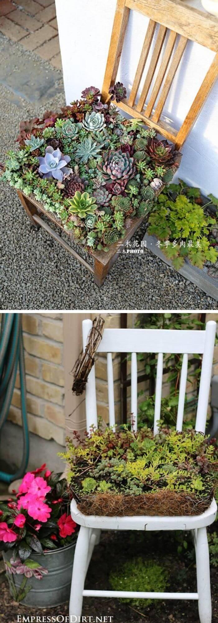 Succulent Garden Chair Planter