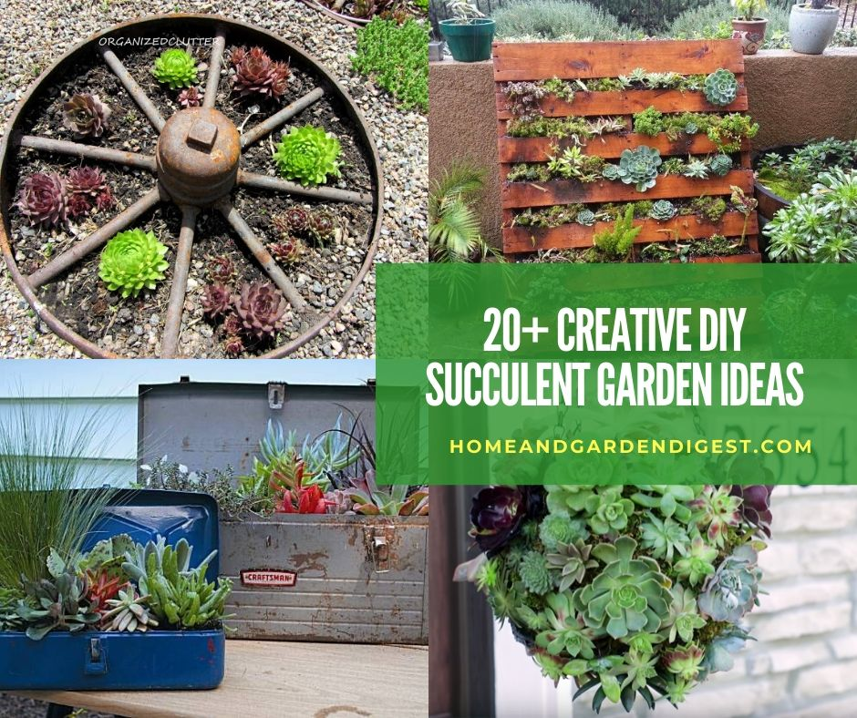 20 Creative Diy Indoor And Outdoor Succulent Garden Ideas Designs