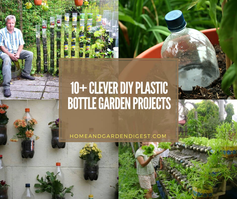 10 Clever Diy Plastic Bottle Garden Projects For 2020