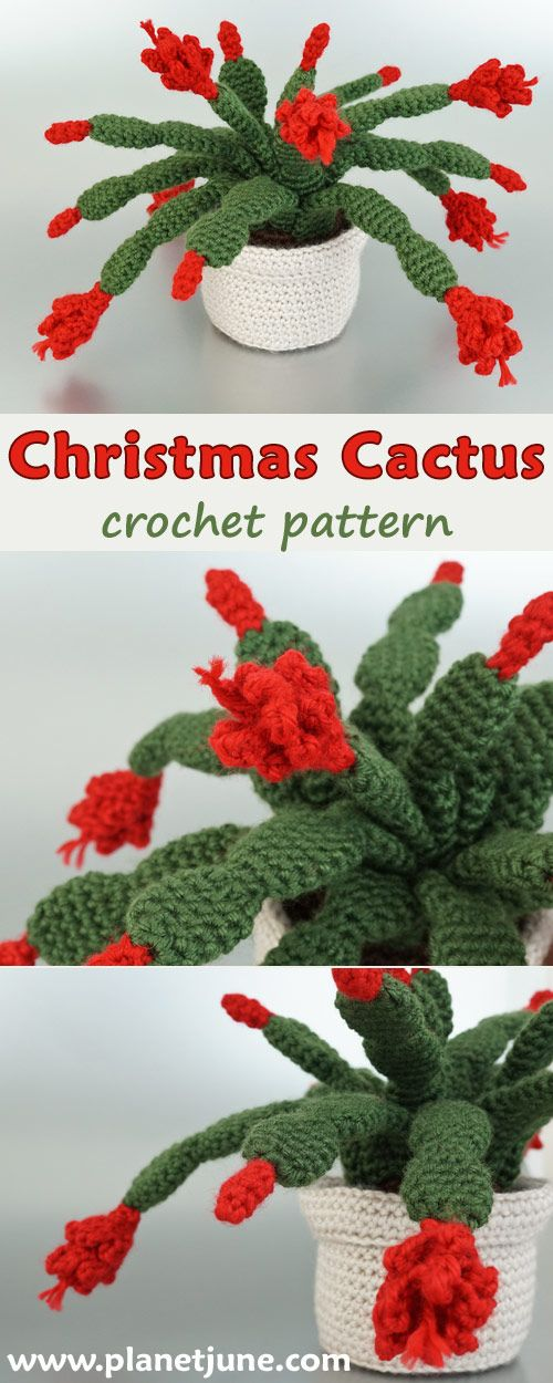 Crochet} 3 Musketeer Cacti pattern   Simply Tale   1250x500