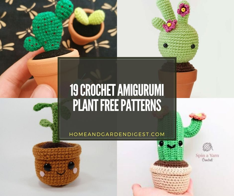 Crochet Cactus Patterns Best Ideas Video Instructions | 788x940
