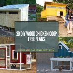 20 DIY Wood Chicken Coop Free Plans