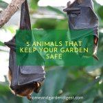 5 Animals that keep your garden safe