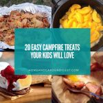 20 Easy Campfire Treats Your Kids Will Love