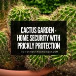 Cactus Garden - Home Security With Prickly Protection