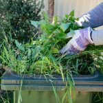 How to Find the Best Services for Removing Garden Rubbish
