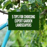 5 Tips For Choosing Expert Garden Landscapers